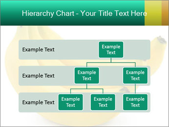 0000096626 PowerPoint Template - Slide 67