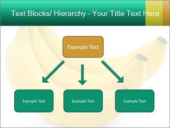 0000096626 PowerPoint Template - Slide 69