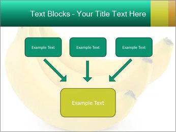 0000096626 PowerPoint Template - Slide 70