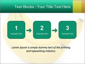 0000096626 PowerPoint Template - Slide 71
