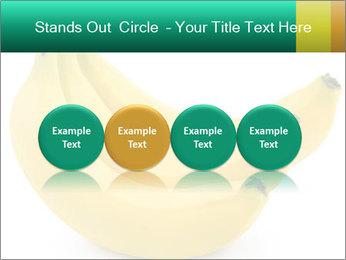 0000096626 PowerPoint Template - Slide 76