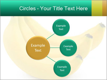 0000096626 PowerPoint Template - Slide 79