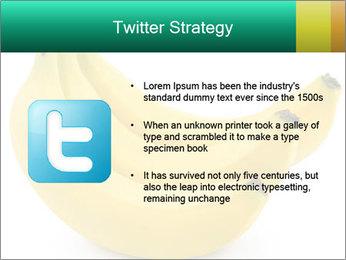 0000096626 PowerPoint Template - Slide 9