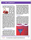 0000096627 Word Template - Page 3