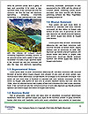 0000096630 Word Template - Page 4