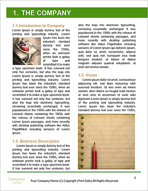 0000096631 Word Template - Page 3