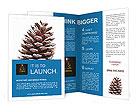 0000096635 Brochure Templates