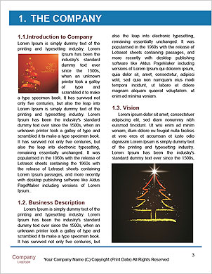 0000096635 Word Template - Page 3