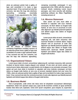 0000096635 Word Template - Page 4