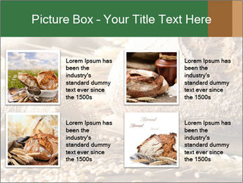 0000096636 PowerPoint Template - Slide 14