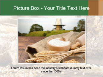 0000096636 PowerPoint Template - Slide 15