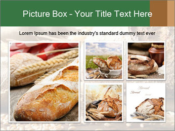0000096636 PowerPoint Template - Slide 19