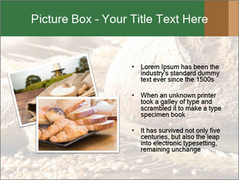 0000096636 PowerPoint Template - Slide 20