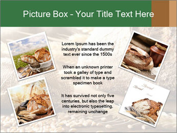 0000096636 PowerPoint Template - Slide 24