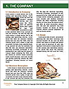 0000096636 Word Template - Page 3
