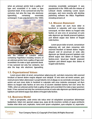 0000096636 Word Template - Page 4