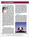 0000096639 Word Template - Page 3