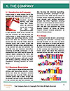 0000096642 Word Template - Page 3