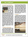 0000096647 Word Template - Page 3