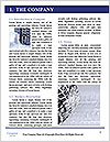 0000096649 Word Template - Page 3