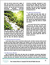 0000096650 Word Template - Page 4