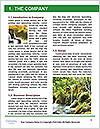 0000096653 Word Template - Page 3