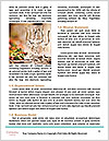 0000096659 Word Template - Page 4