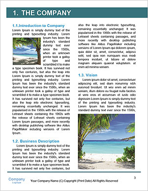 0000096660 Word Template - Page 3