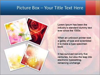 0000096661 PowerPoint Template - Slide 23