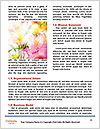 0000096661 Word Template - Page 4