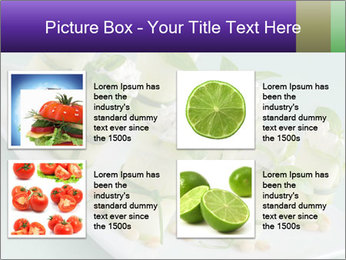 0000096666 PowerPoint Template - Slide 14