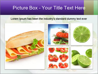 0000096666 PowerPoint Template - Slide 19