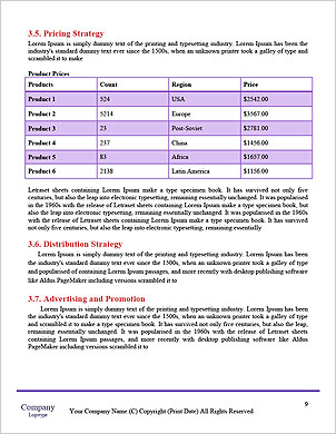 0000096668 Word Template - Page 9