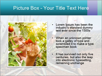 0000096669 PowerPoint Template - Slide 13
