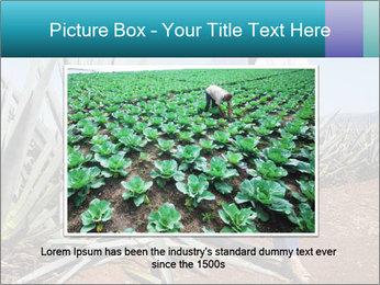 0000096669 PowerPoint Template - Slide 15