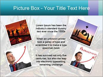 0000096669 PowerPoint Template - Slide 24