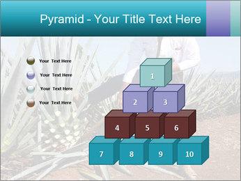 0000096669 PowerPoint Template - Slide 31