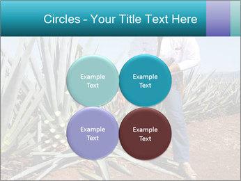0000096669 PowerPoint Template - Slide 38