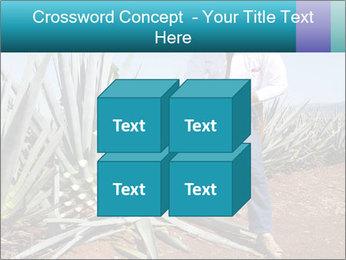 0000096669 PowerPoint Template - Slide 39