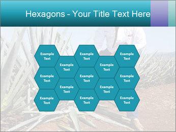0000096669 PowerPoint Template - Slide 44