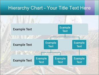 0000096669 PowerPoint Template - Slide 67