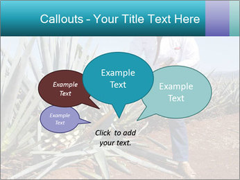 0000096669 PowerPoint Template - Slide 73
