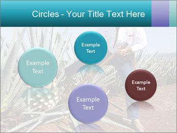 0000096669 PowerPoint Template - Slide 77