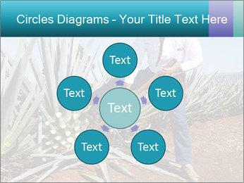 0000096669 PowerPoint Template - Slide 78