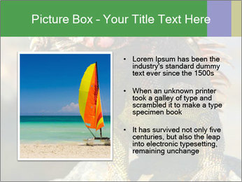 0000096670 PowerPoint Template - Slide 13