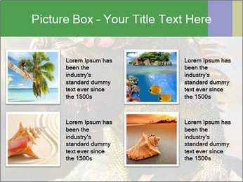 0000096670 PowerPoint Template - Slide 14