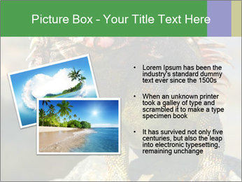 0000096670 PowerPoint Template - Slide 20