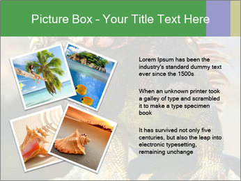 0000096670 PowerPoint Template - Slide 23