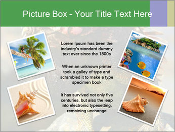0000096670 PowerPoint Template - Slide 24