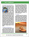 0000096670 Word Template - Page 3